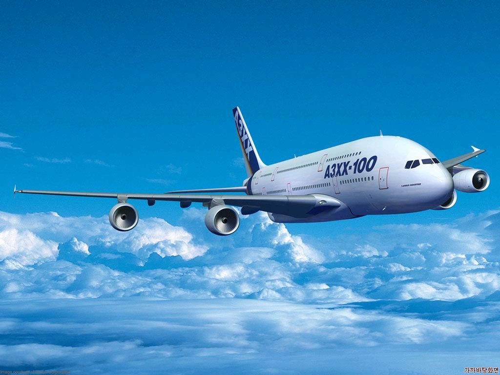http://miraclesofthequran.persiangig.com/Zistshenasi/airplane.jpg