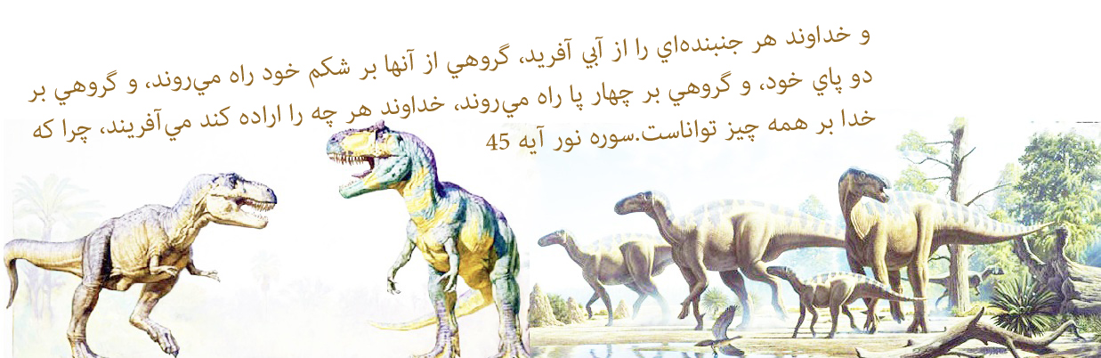 http://miraclesofthequran.persiangig.com/pictures/new/din1o.jpg